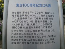 Simg_8997