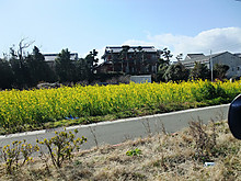 2013_02130002