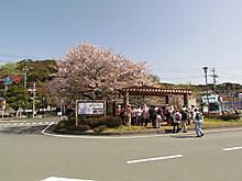 2013_04040002