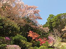 2013_04080036