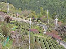 2013_04110073