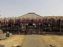 2013_04160002