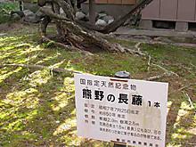 2013_04160010