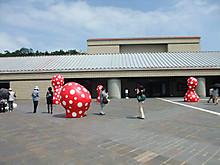 2013_05180111_2