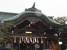 2013_11060062