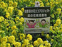 2014_01310028