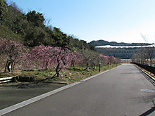 2014_02210041