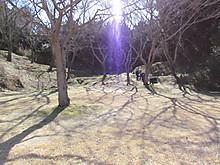 2014_0222hurawapaku0063