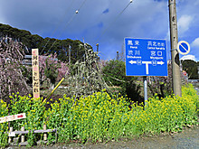 2014_03100079