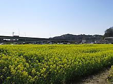 2014_03250026