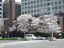 2014_04020093