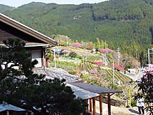 2014_04090395