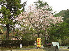 2014_04140202_2