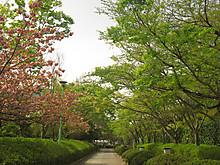 2014_04160035