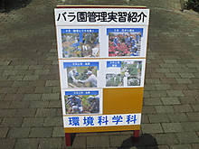 2014_05090019