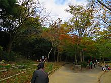 2014_11080007