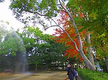 2014_12070034