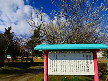 2015_02200008