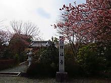 2015_03110031
