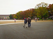 2015_11250010