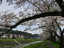 2016_04060028