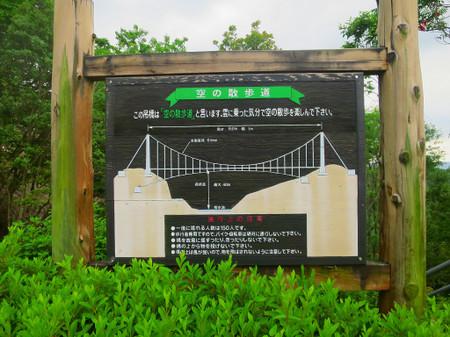 2016_06070003_2