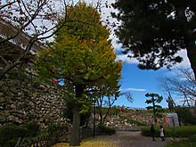 2016_11230048