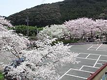 2017_04120058